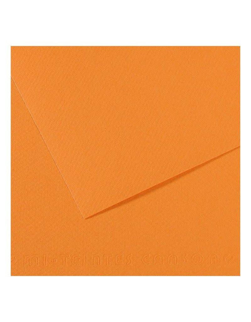 Canson Mi-Teintes Paper Sheets, 19'' x 25'', Buff