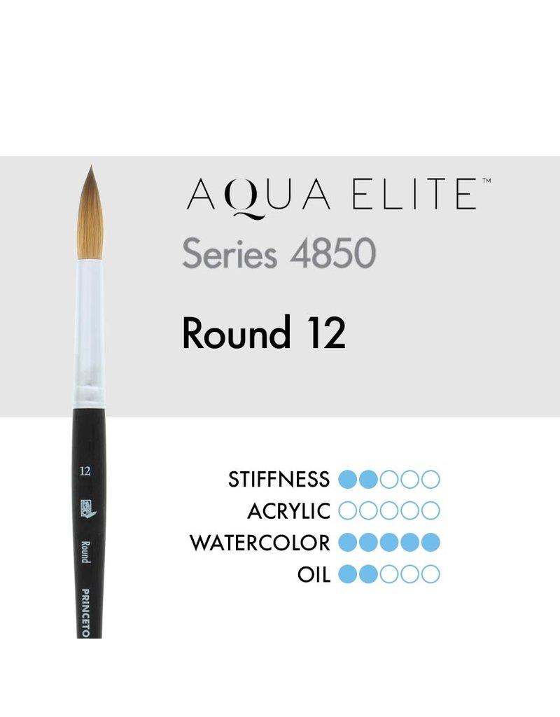 Princeton Aqua Elite Syn Kol Wc Rnd 12