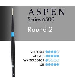 Princeton Aspen Round 2