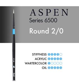 Princeton Aspen Round 2/0