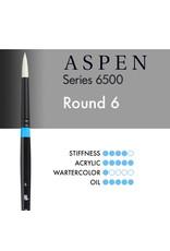 Princeton Aspen Round 6