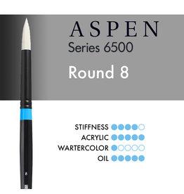 Princeton Aspen Round 8