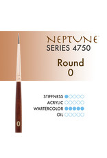 Princeton Neptune Synthetic Squirrel Round 0