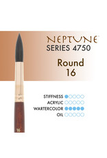 Princeton Neptune Synthetic Squirrel Round 16