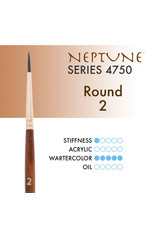 Princeton Neptune Synthetic Squirrel Round 2