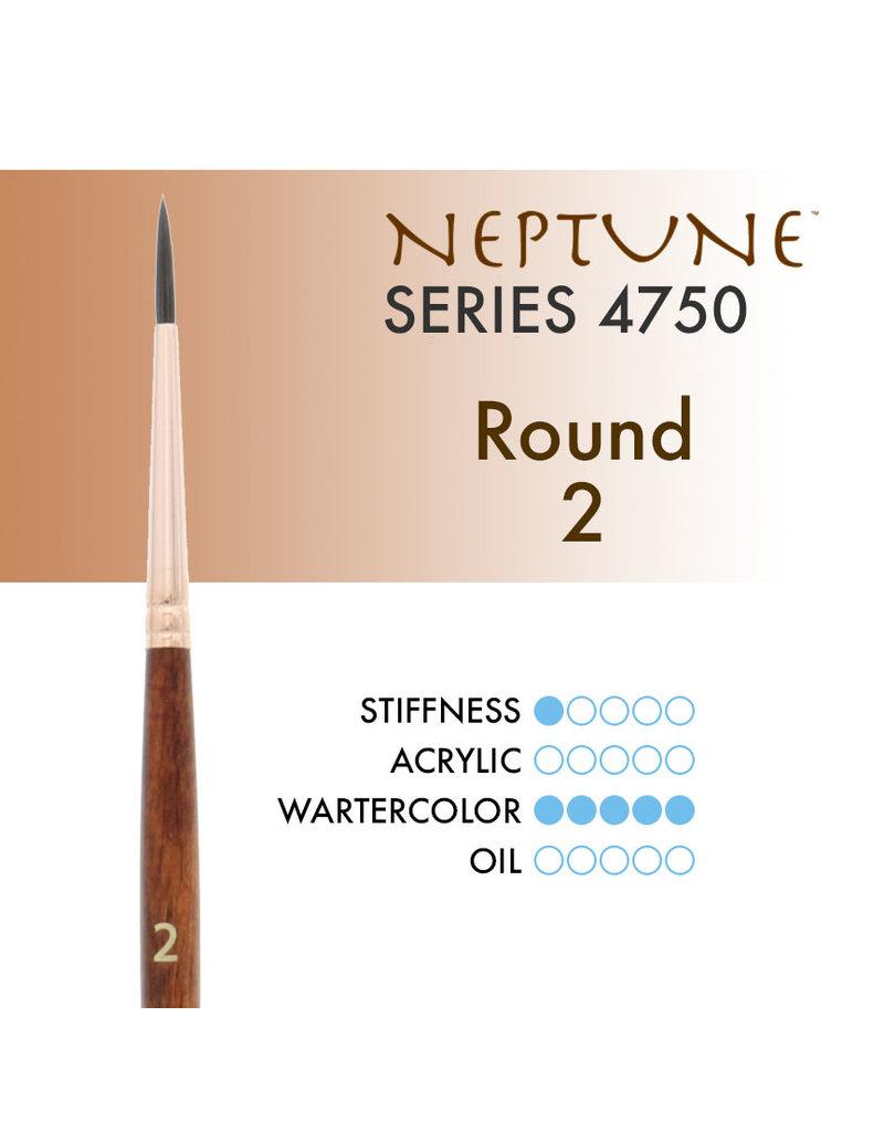 Princeton Neptune Syn Squirrel Rnd 2