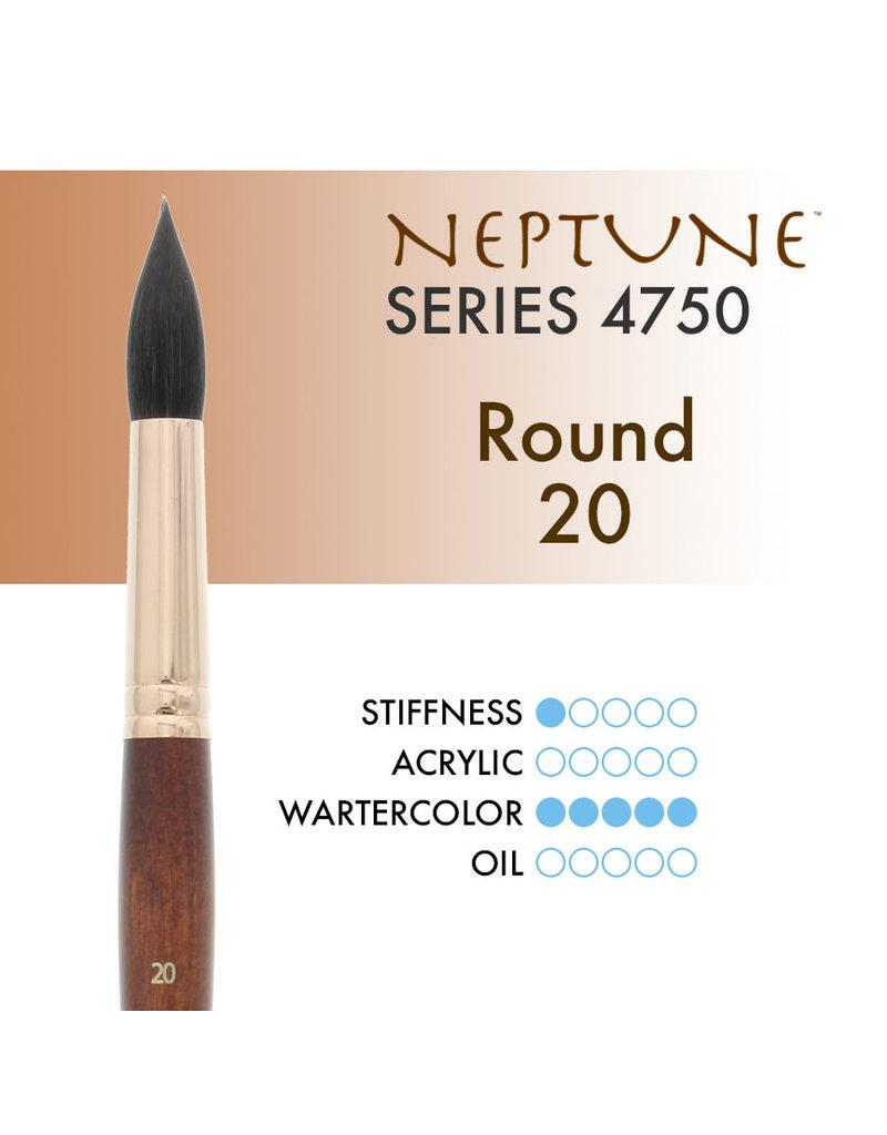 Princeton Neptune Syn Squirrel Rnd 20