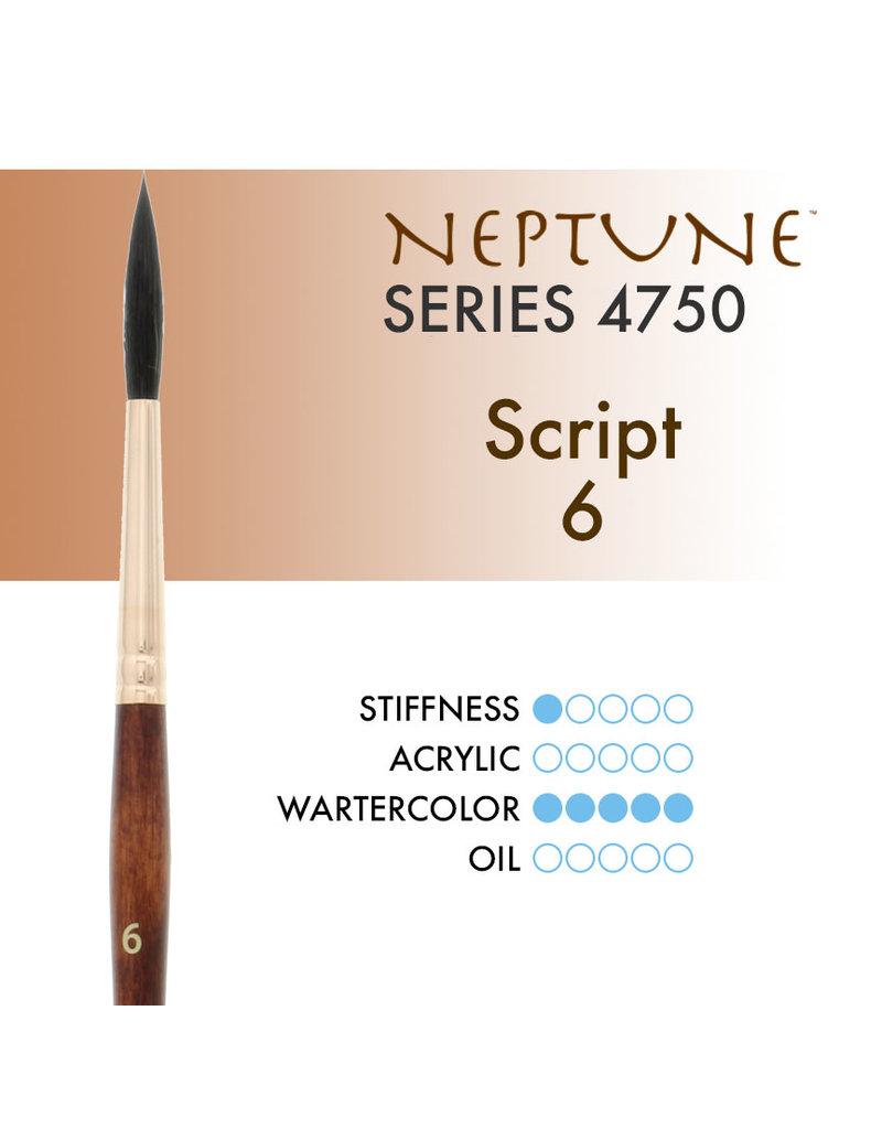 Princeton Neptune Syn Squirrel Script 6