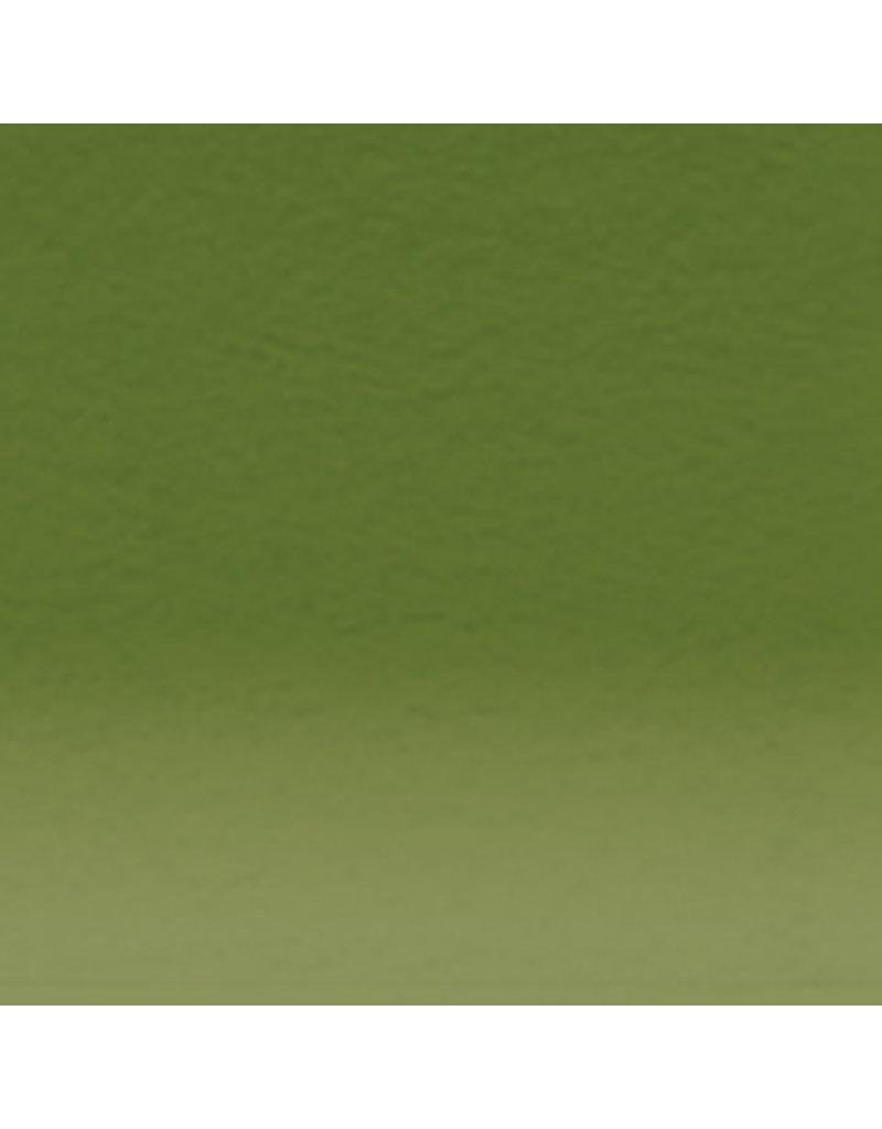 Derwent Inktense Pencil Leaf Green