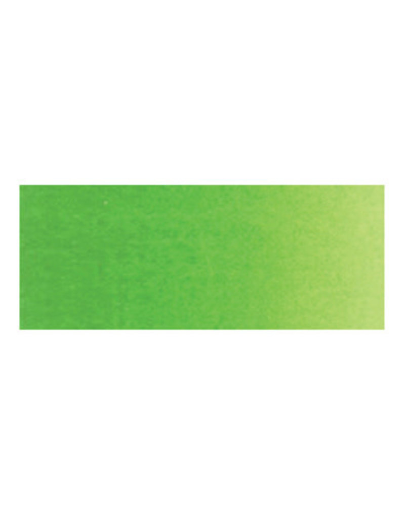 Holbein Artists Watercolor 15Ml Permanent Green #1