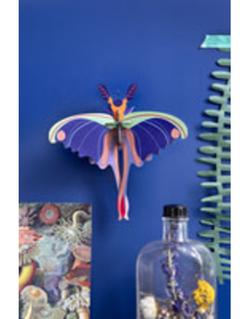 Studio Roof Wall Deco, Small, Blue Comet Butterfly
