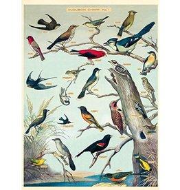 Cavallini Wrap Sheet Audubon Birds