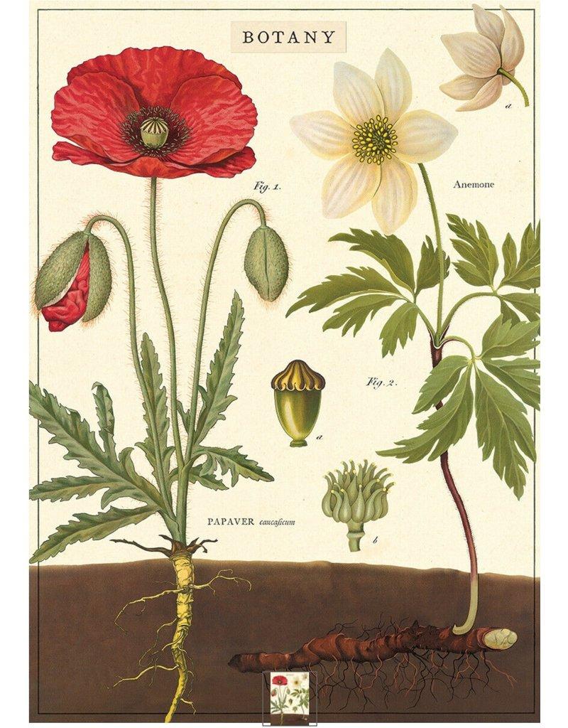 Cavallini Wrap Sheet Botany