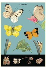 Cavallini Wrap Sheet Butterflies 2