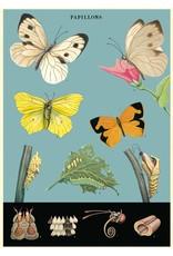 Cavallini Wrap Sheet Butterflies 2
