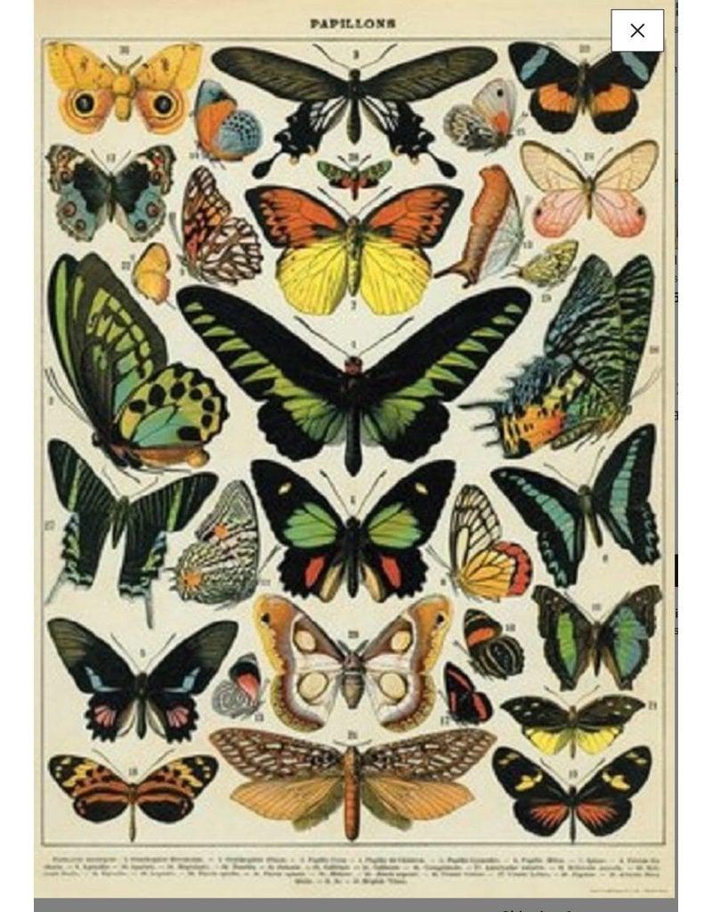 Cavallini Wrap Sheet Butterfly Chart