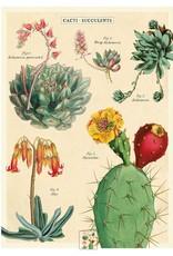 Cavallini Wrap Sheet Cacti & Succulents 2