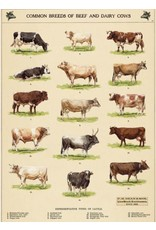 Cavallini Wrap Sheet Cow Chart