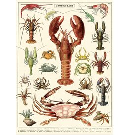 Cavallini Wrap Sheet Crustaceans