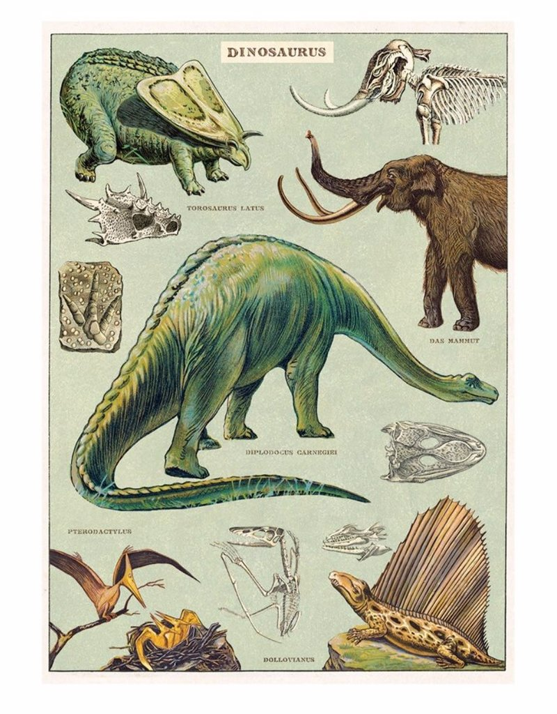 Cavallini Wrap Sheet Dinosaurs