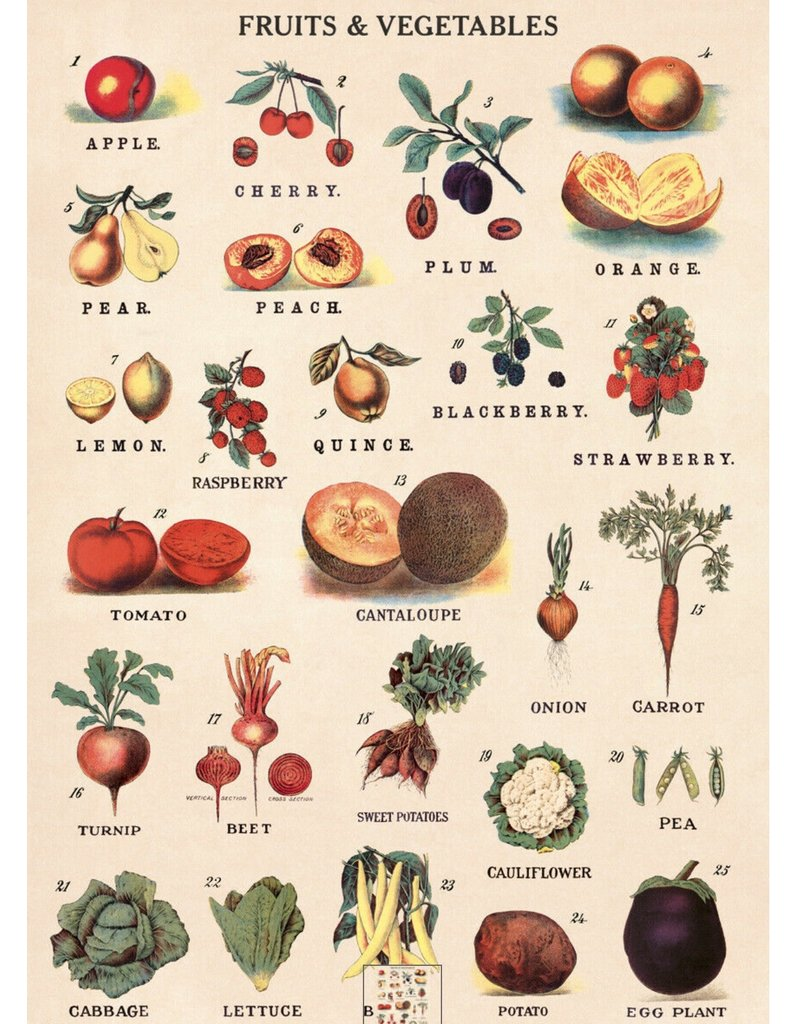 Cavallini Wrap Sheet Fruit & Vegetables