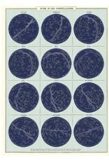 Cavallini Wrap Sheet Constellations