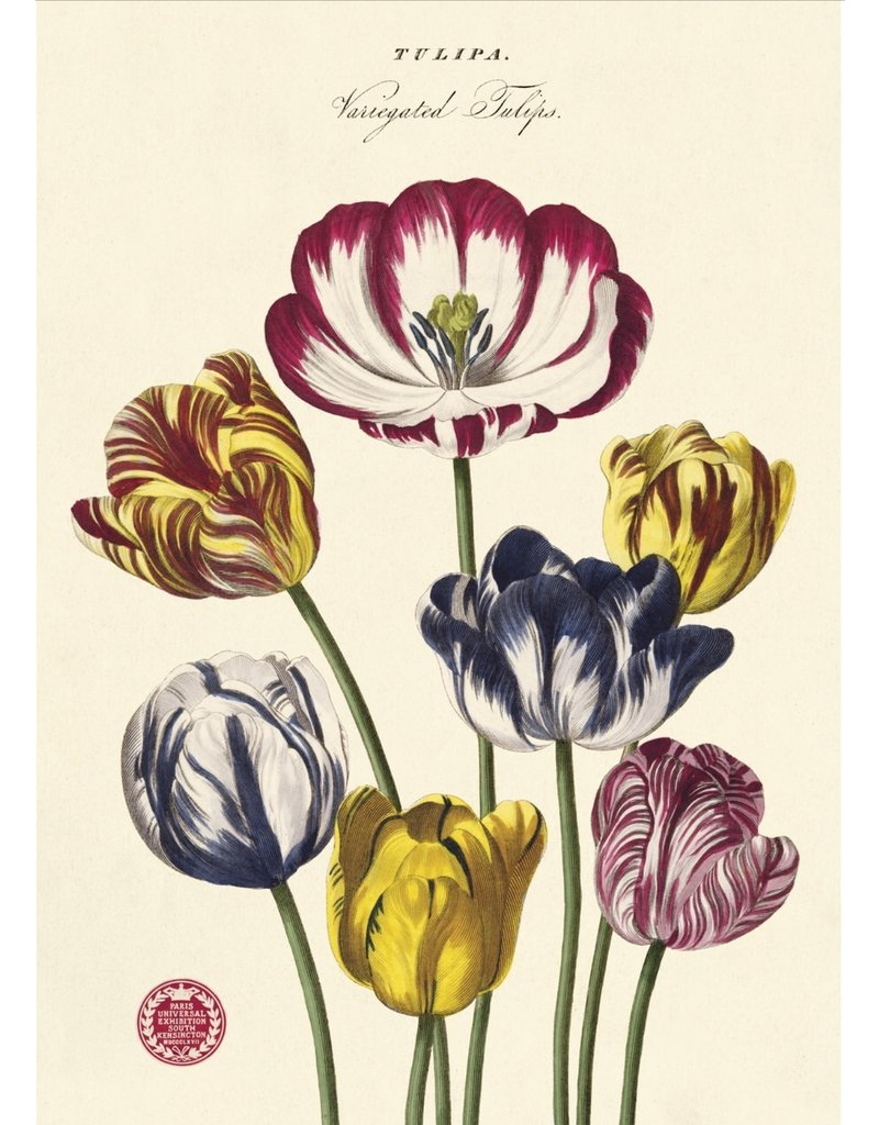 Cavallini Wrap Sheet Tulips