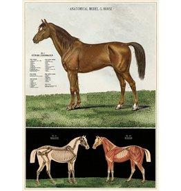 Cavallini Wrap Sheet Horses