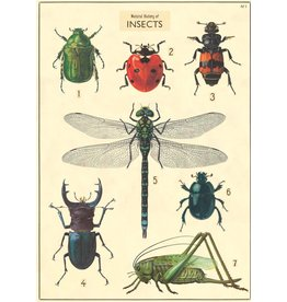 Cavallini Wrap Sheet Nh Butterflies & Insects 3
