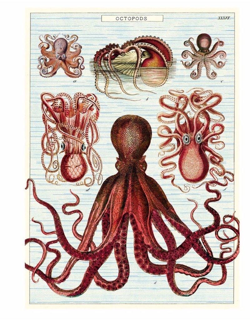 Cavallini Wrap Sheet Octopods
