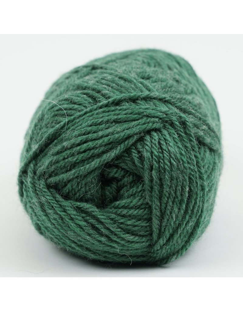 Kraemer Yarns YARN - PERFECTION WORSTED ALLIGATOR