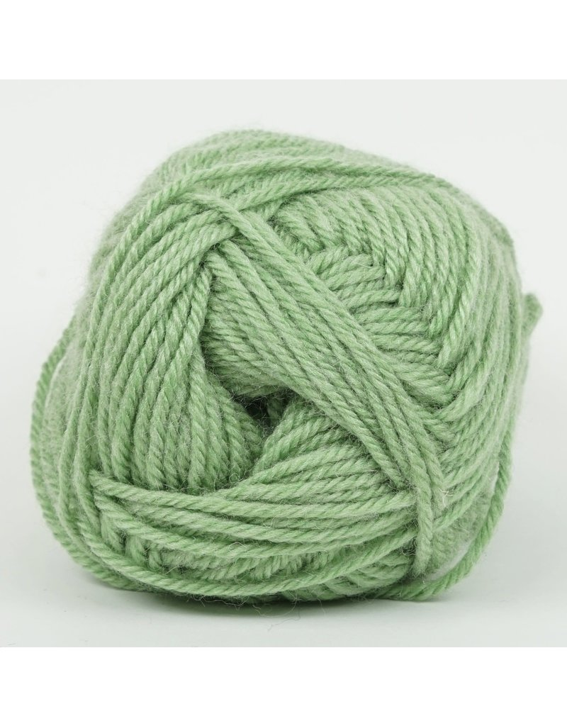 Kraemer Yarns YARN - PERFECTION WORSTED SPROUT