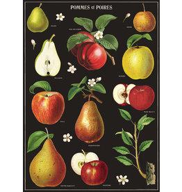 Cavallini Wrap Sheet Apples & Pears