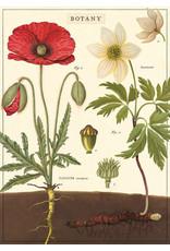 Cavallini Wrap Sheet Botany Chart