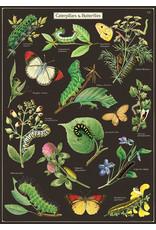 Cavallini Wrap Sheet Caterpillars & Butterflies