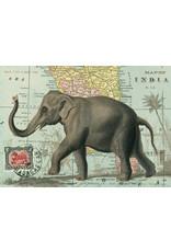 Cavallini Wrap Sheet Elephant