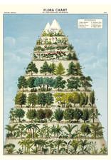 Cavallini Wrap Sheet Flora Chart
