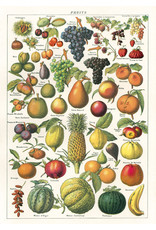 Cavallini Wrap Sheet Fruit Chart