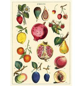 Cavallini Wrap Sheet Fruit 2