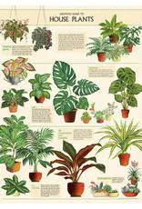 Cavallini Wrap Sheet House Plants