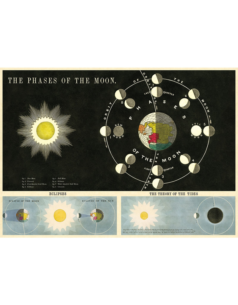 Cavallini Wrap Sheet Phases Of The Moon