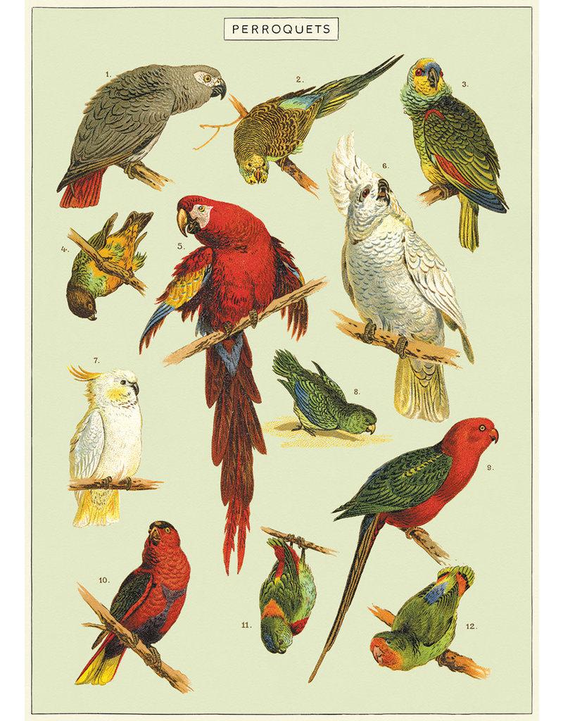 Cavallini Wrap Sheet Parrots