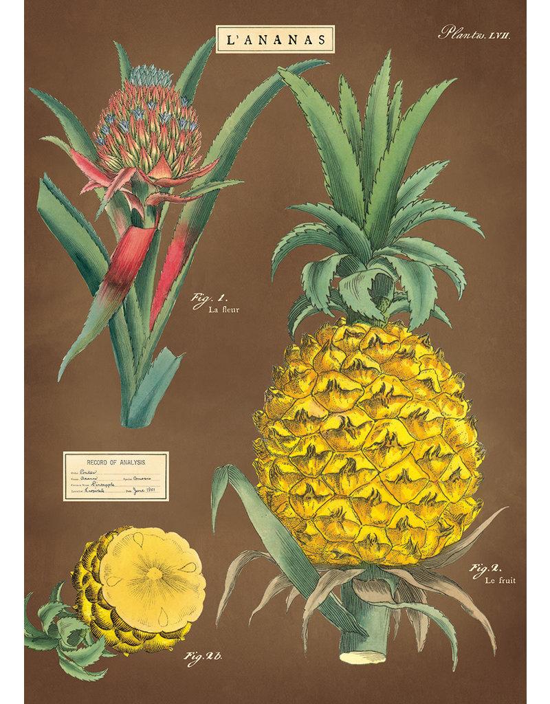 Cavallini Wrap Sheet Pineapple