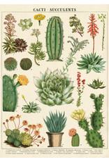Cavallini Wrap Sheet Cacti & Succulents