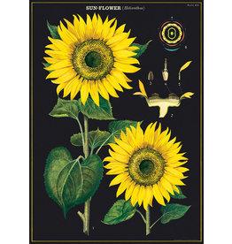 Cavallini Wrap Sheet Sunflower