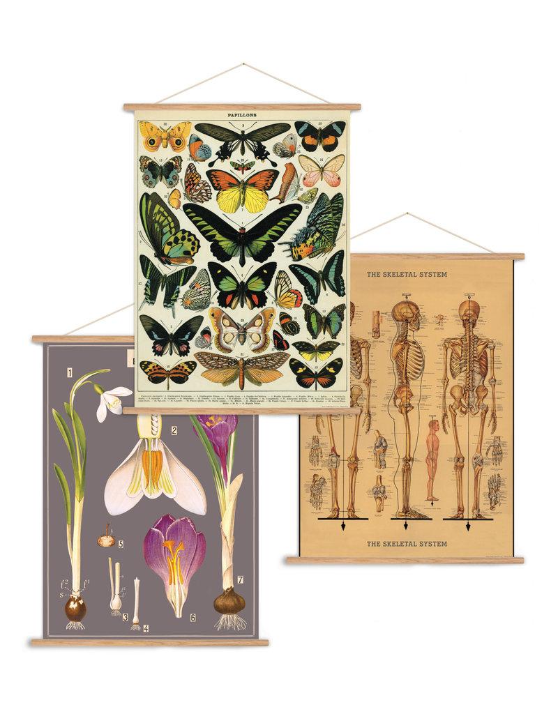 Cavallini Vertical Vintage Poster Kit