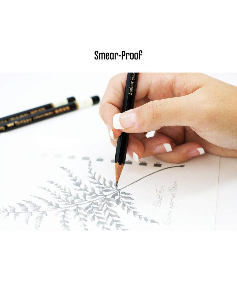 Tombow Mono Drawing Pencil 2B