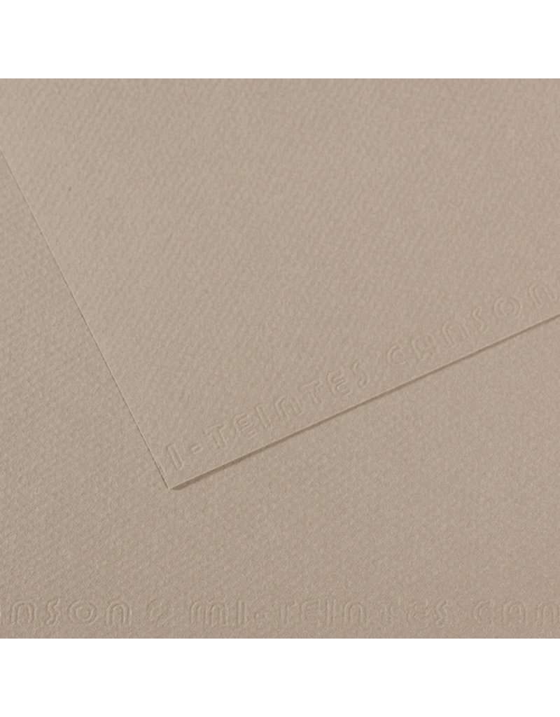 Canson Mi-Teintes Paper Sheets, 19'' X 25'', Flannel Gray