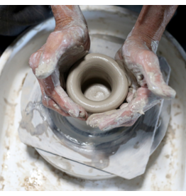 CE201 Intro To Ceramics: The Wheel Thrown Form