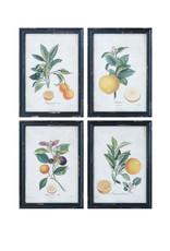 Orange Images Wood Framed Wall Décor (Set of 4 Designs)